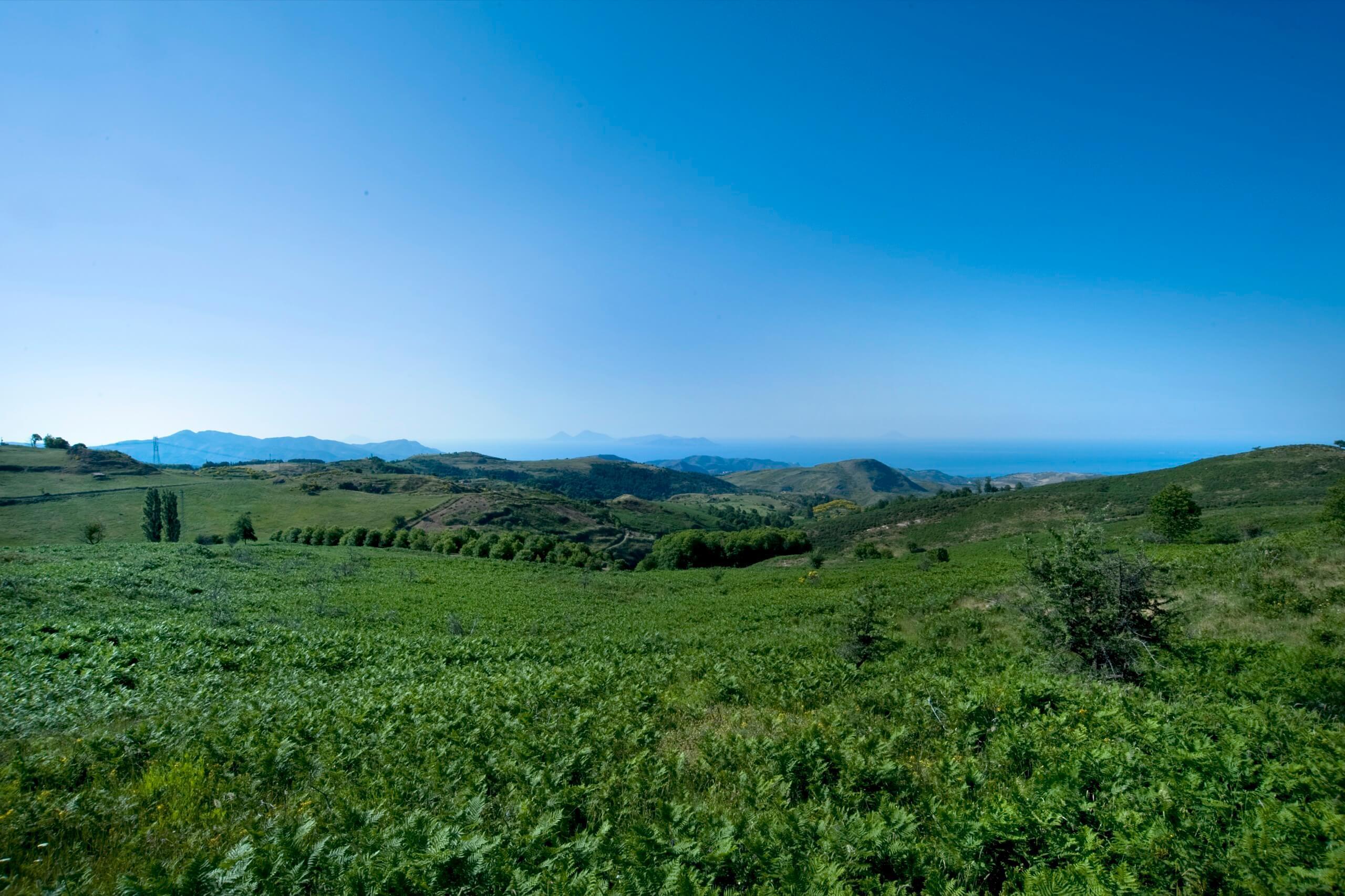 Montalbano Panorama 008